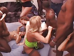 Dirty Old Bitches Get Savaged At An Interracial Fuck Party!!